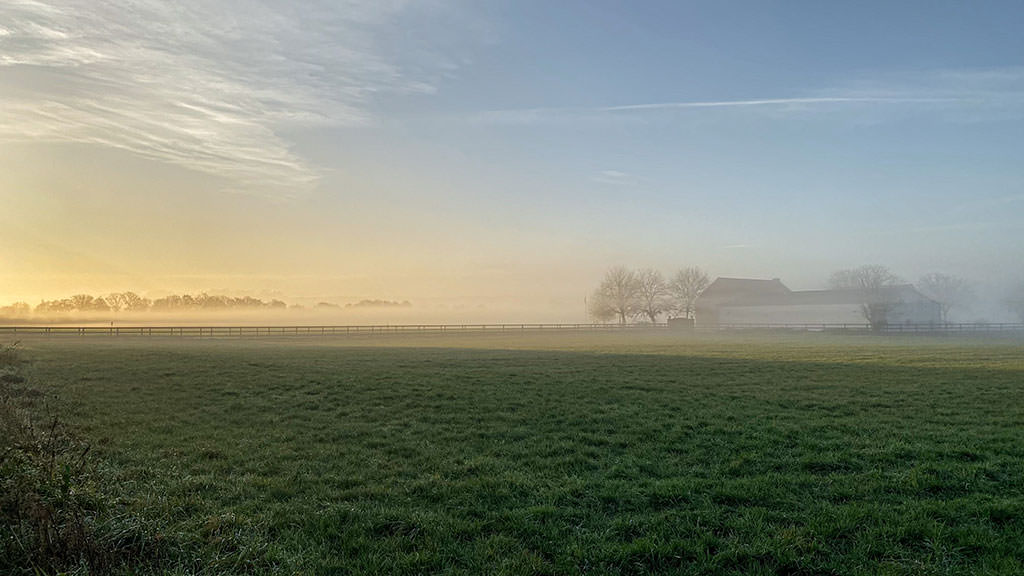 A photo I took in the morning, showing a foggy field, where the sun is breaking through the fog, a house far away on the right and a few trees on the left side.
